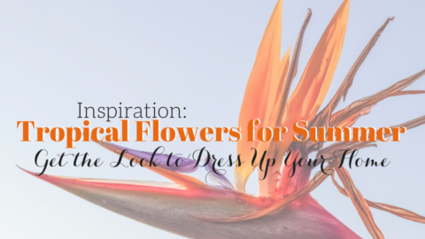 Inspired by the Tropics | Use Tropical Flowers to Spruce Up the Summer Season